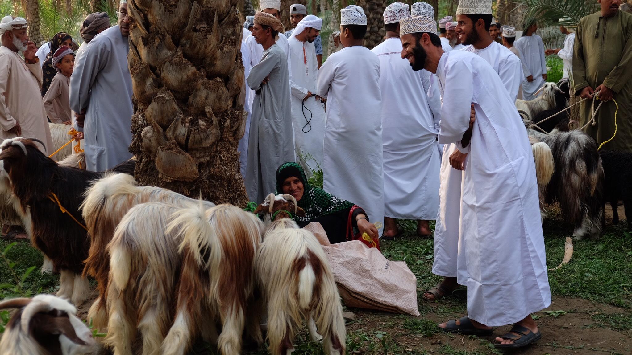 Shoppers flock to Habta markets in Oman