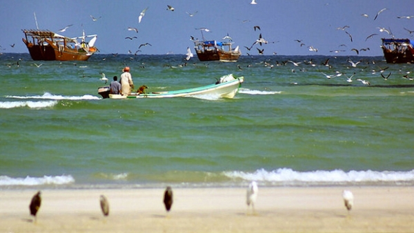 Fishermen rescue expats from drowning in Oman