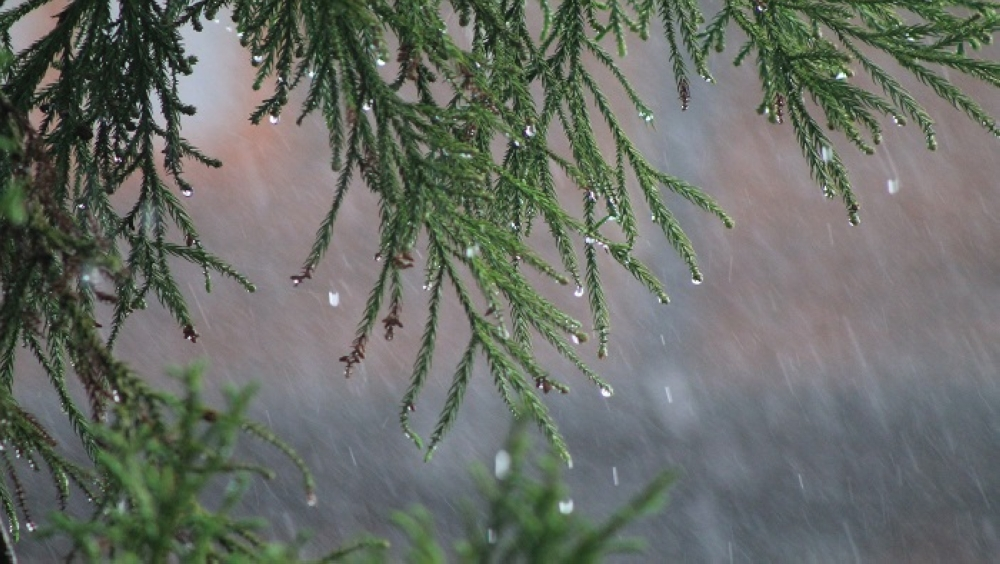 Oman weather: Isolated rainfall over parts of Dhofar