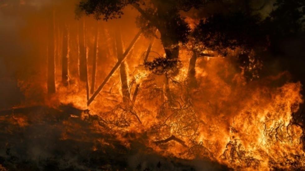 بسبب حرائق غابات كاليفورنيا..إجلاء 180 ألف شخص