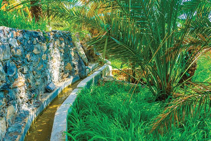 Travel Oman: The wonders of falaj irrigation system