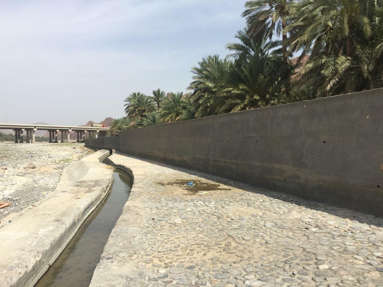 """155 حائط حماية.. """"الزراعة"""" تبذل جهودا لحماية الأراضي الزراعية من الانجراف"""