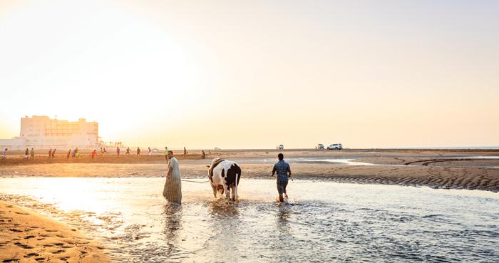 Travel Oman: Sohar