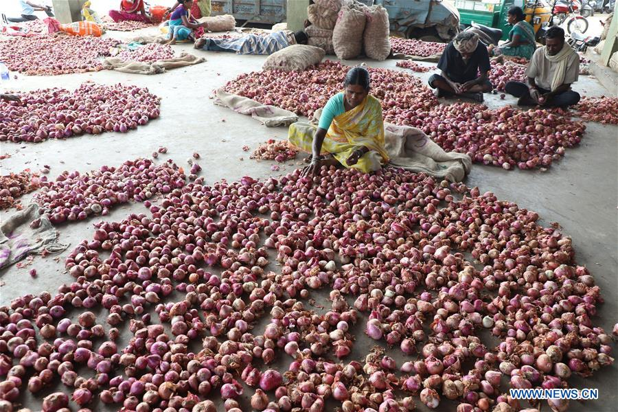 India's federal gov't asks states to act against onion hoarders