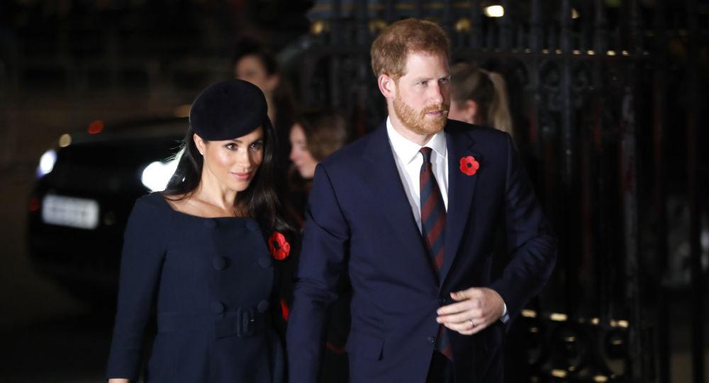 """DW: هاري وميغان يفقدان لقب """"السمو الملكي"""""""