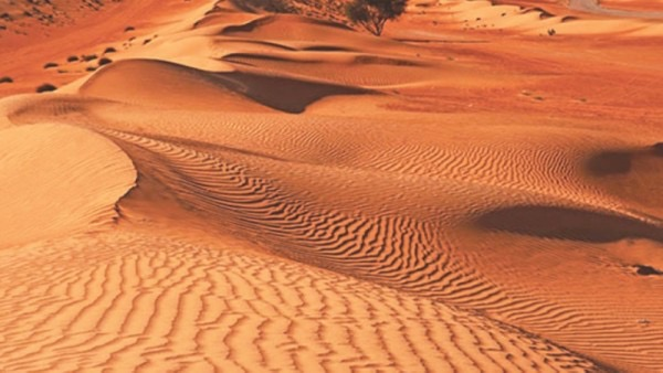 Royal Oman Police rescue stranded foreign family from desert