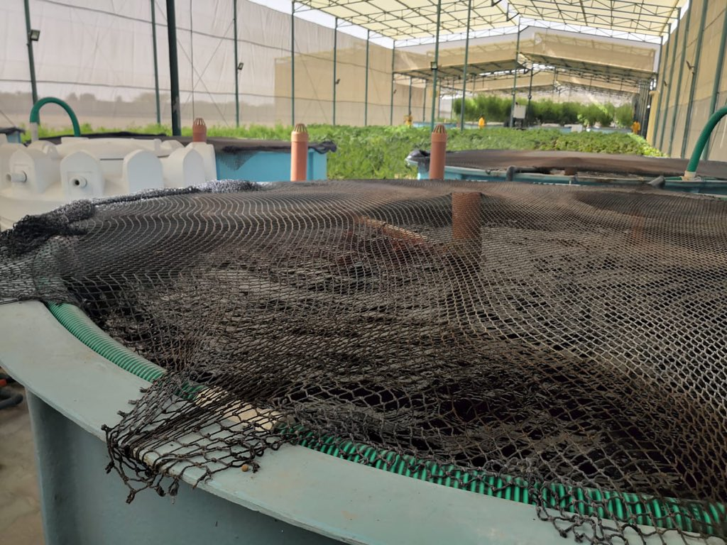 Ministry of Agriculture and Fisheries adopts new project