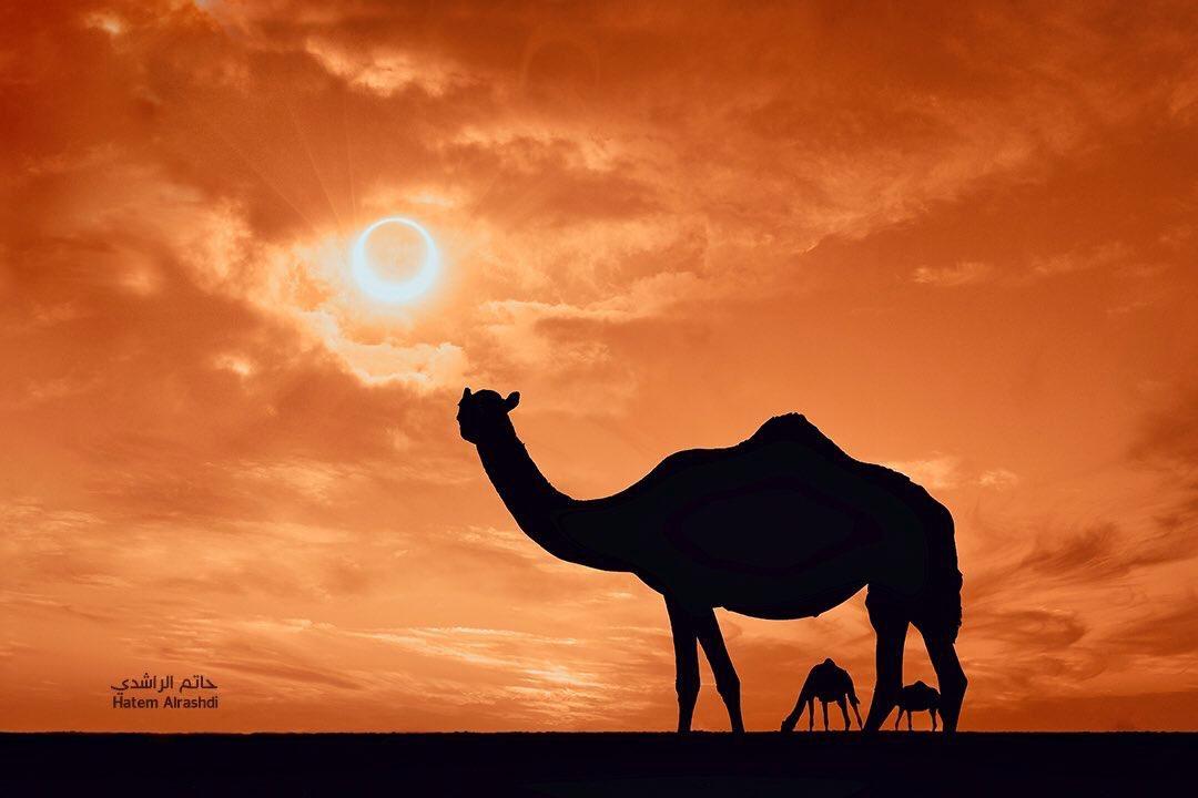Oman to witness solar eclipse
