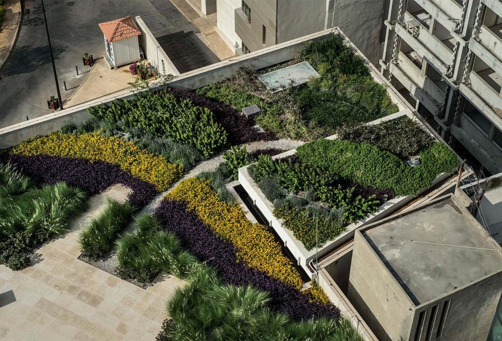 زراعة مائية على أبنية عربية