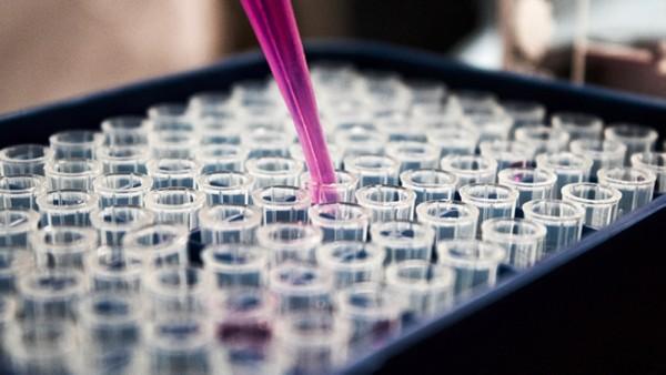 Oman plans to obtain 700,000 Covid-19 vaccines