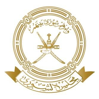 هل يستمر عضو مجلس الشورى في المجلس بعد تعيينه في وظيفة عمومية؟