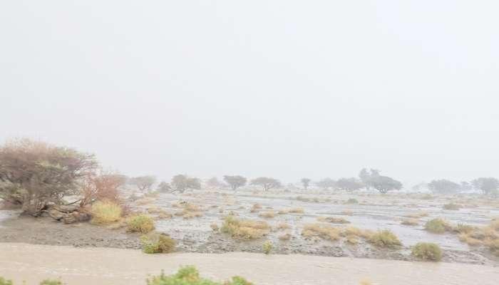 أمطار على بعض قرى ينقل