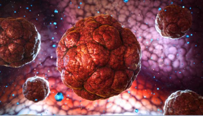 دراسة : فيروس كورونا يتحور بمعدل بطيء جدا بشكل غير عادي
