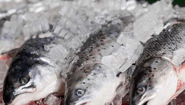 Central fish market, port market to open in Wilayat Saham