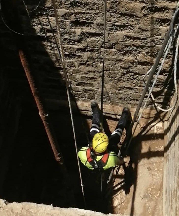 A horse falls into 37-metre deep well