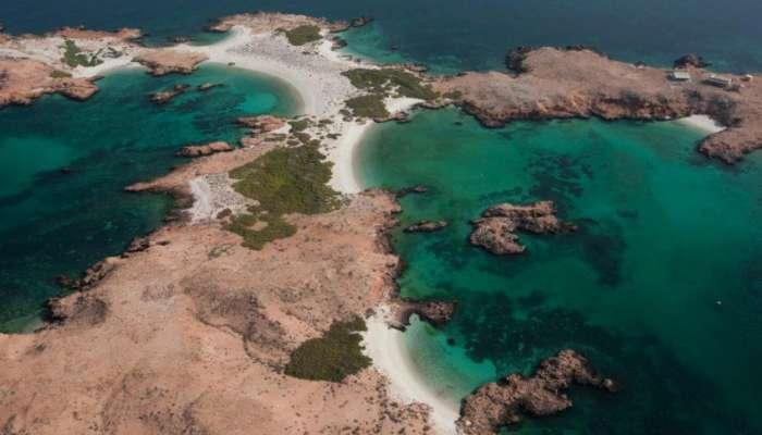 هيئة البيئة: تصاريح المبيت لمحمية جزر الديمانيات متوقفة وفقًا لقرارات اللجنة العليا