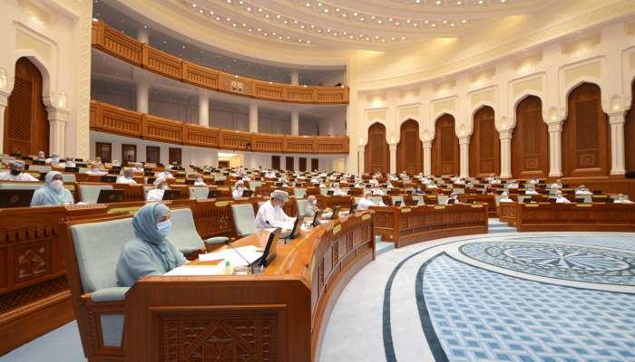 مجلس الدولة يحيل ميزانية 2021 إلى مجلس الوزراء