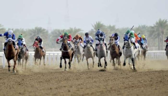 نخبة الخيول بالسلطنة تشارك في كأس الديربي العماني الجمعة القادم