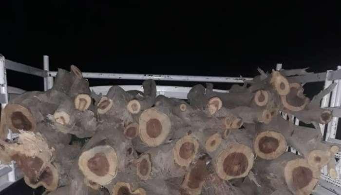 هيئة البيئة تضبط مركبة محملة بالحطب ومخالفة لقانون حماية البيئة
