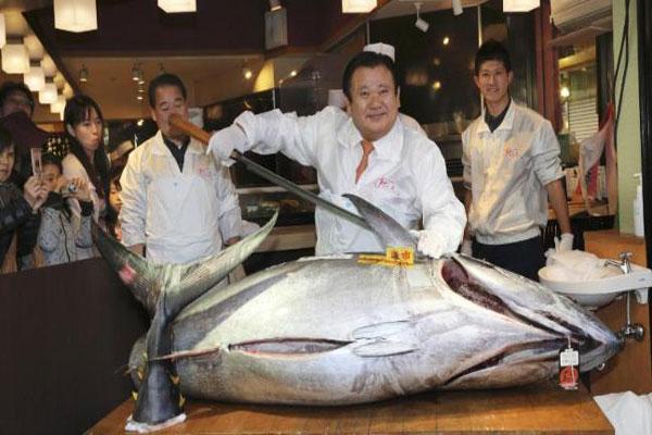 بيع سمكة تونة بأكثر من 20 مليون ين في مزاد باليابان