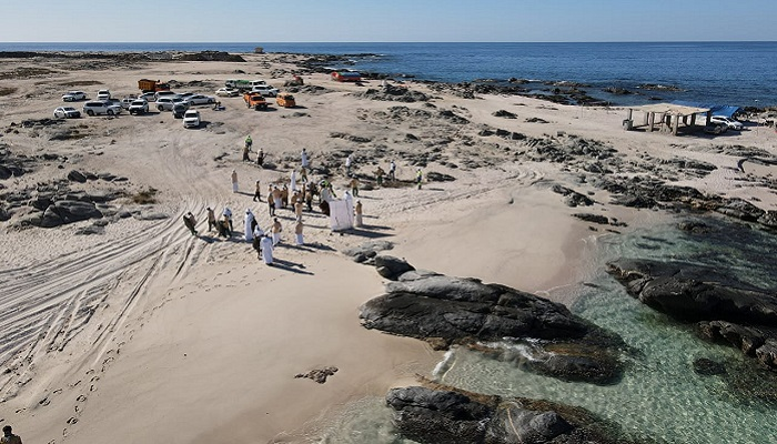 Dhofar holds beach cleaning, tree-planting campaign