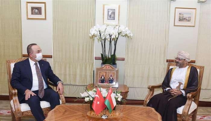 وزير الخارجية يعقد جلسة مشاورات مع نظيره التركي
