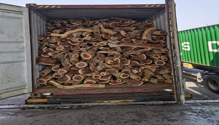 Attempts to smuggle firewood from port of Sohar thwarted