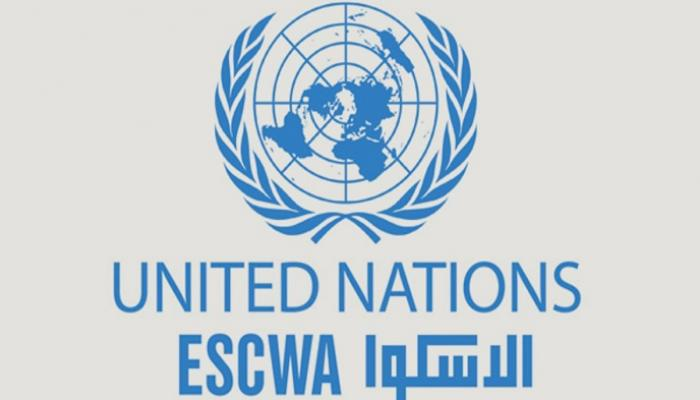 UN body praises Oman for successful conduct of electronic census