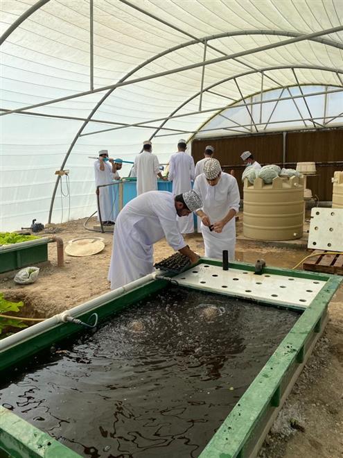مشروع 'الزراعة الأحيومائية' بمدرسة مالك بن فهم