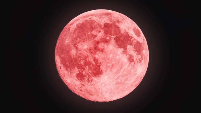 While at home tonight, make sure you watch the pink moon