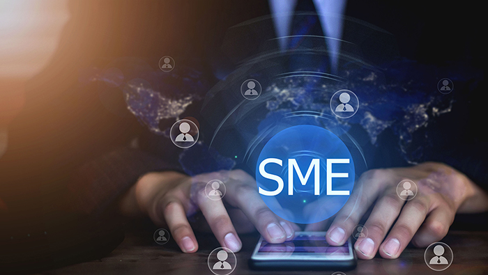 SMEs are engines, unsung heroes of economy: WIPO