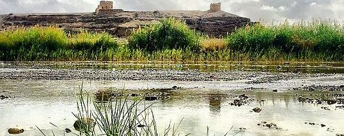 'قرية الخوض' ..أرضا خصبة وماء عذبًا وفيرًا