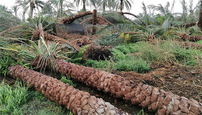 In Pictures: Damage caused by rains in Oman