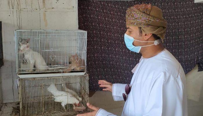 صدور بعض المخالفات لمحلات بيع الحيوانات الأليفة والطيور بصلالة