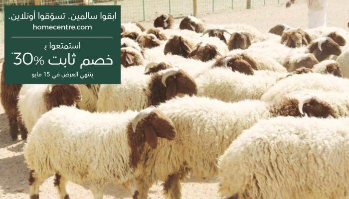 الزراعة: التزموا بالإجراءات عند التعامل مع الحيوانات تجنبًا للحمى النزفية