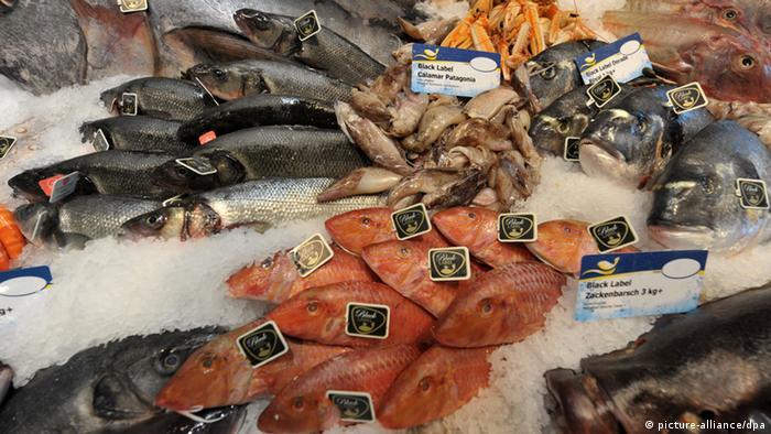 للحامل.. ابتعدي عن تناول هذه الأنواع من الأسماك