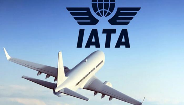 Air travel sees domestic recovery but international stagnation: IATA