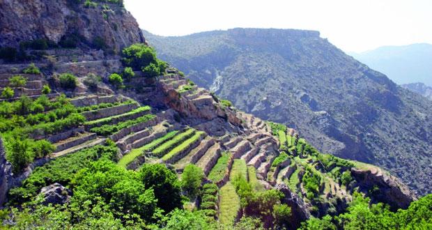 حالة الطقس.. سحب ركامية على جبال الحجر وغائم جزئيًا على ظفار