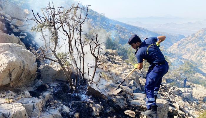 Ras Al Harq fire under control: CDAA