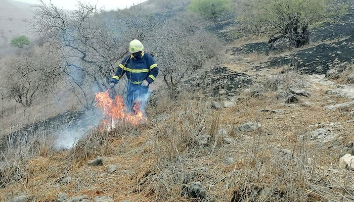 Fire at grasslands in Dhofar brought under control