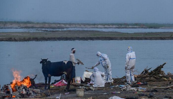 الهند تبلغ عن ظهور طفرة جديدة لفيروس كورونا