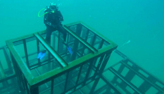 Artificial reef project nears completion in Musandam