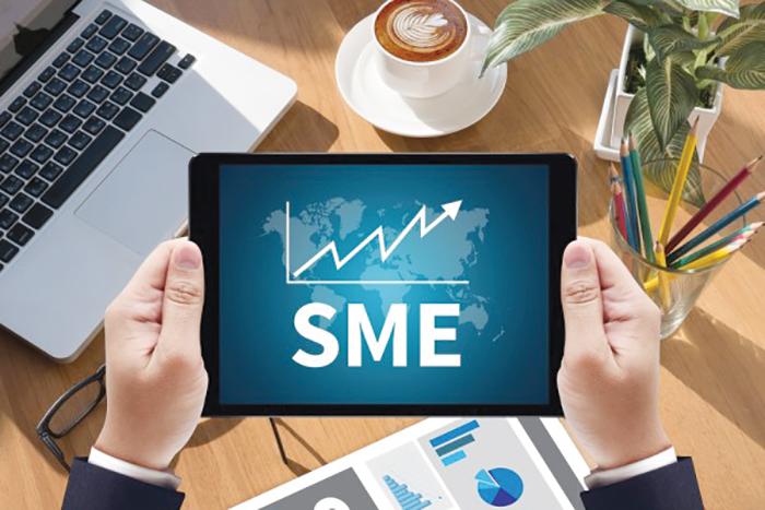 Celebrating micro, small and medium-sized enterprises (MSMEs) day