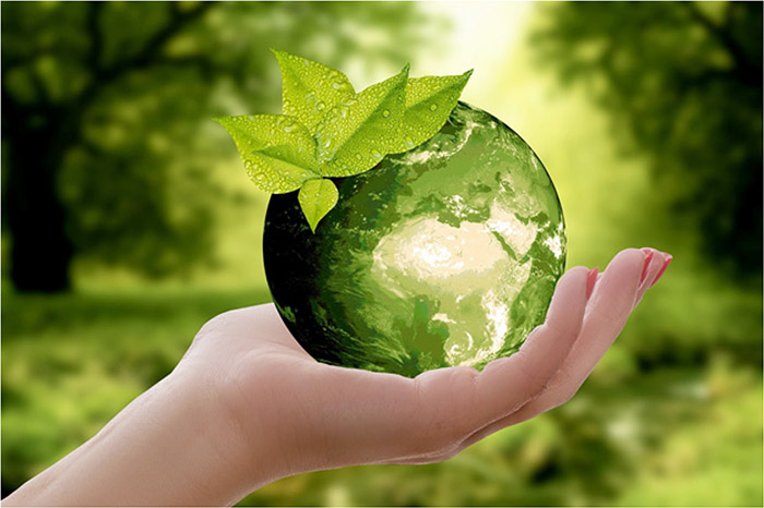 Modern perspectives: Sustainability starts from within