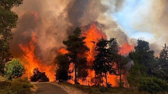 مقتل 4 أشخاص في حرائق غابات هائلة في قبرص