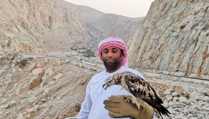مسندم: إطلاق طائر عقاب العسل إلى بيئته الطبيعية بعد تلقيه العلاج