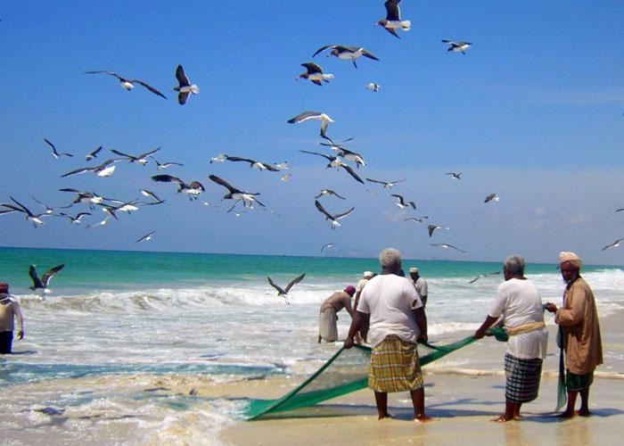 السماح للصيادين والمزارعين ومربي المواشي بمزاولة أعمالهم أثناء سريان قرار الإغلاق التام