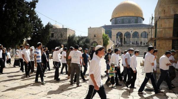 عشرات المستوطنين اليهود يقتحمون ساحات المسجد الأقصى