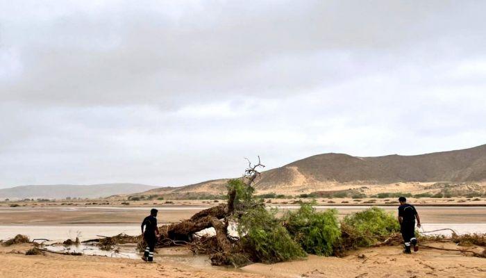 فرق البحث والإنقاذ تواصل عملياتها للبحث عن 4 مفقودين بجنوب الشرقية