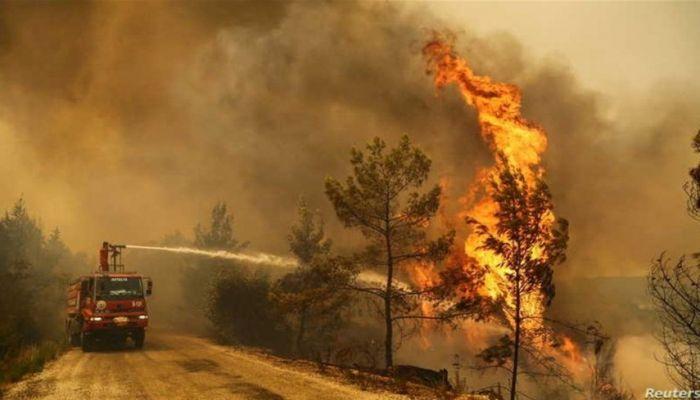 السيطرة على أغلب الحرائق التي اندلعت في غابات متفرّقة بتركيا